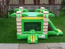 Tropical 3 in 1 Bouncer